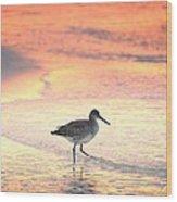 Sunrise Shorebird Wood Print