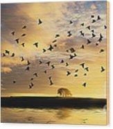 Birds Awaken At Sunrise Wood Print