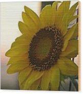 Sunrise Sunflower Wood Print