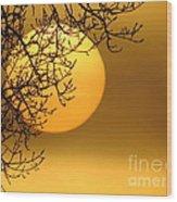 Sunrise Through The Fog Wood Print