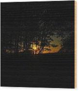 Sunrise Through The Forest Wood Print