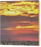 Sunrise Through The Grass Wood Print