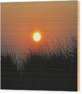 Sunrise Through The Tall Grass Wood Print