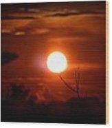 Sunset - Stuck On Tree Branch Wood Print