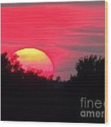 Sunset 365 17 Wood Print