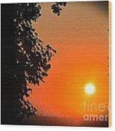 Sunset 365 18 Wood Print