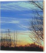 Sunset And 3 Birds Wood Print