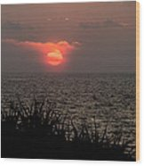 Sunset And Grass Wood Print