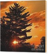 Sunset And Pine Tree  Wood Print