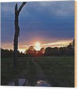 Sunset And The Dead Tree Wood Print