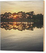 Sunset And Trees On Water Wood Print