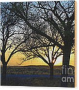 Sunset And Trees Wood Print