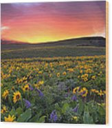Sunset At Columbia Hills State Park Wood Print