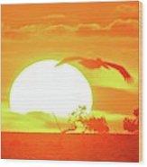 Sunset At Elizabeth Bay Wood Print