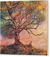 Sunset At Fox Mountain Wood Print