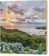 Sunset At Hydrangea Hills Wood Print
