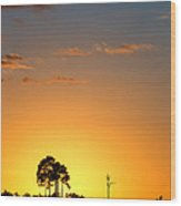 Sunset At Long Pine Key Vertical Wood Print by Andres Leon