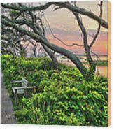 Sunset At Pea Island Wildlife Refuge Outer Banks I Wood Print