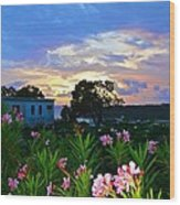 Sunset At Tasty's In Anguilla Wood Print