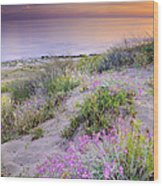 Sunset At The Beach  Flowers On The Sand Wood Print