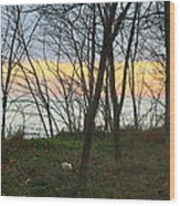 Sunset At The Island Wood Print
