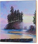 Sunset At Tongue Point Wood Print