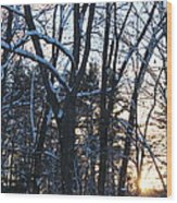 Sunset Behind The Trees Wood Print