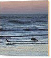Sunset Birds Wood Print