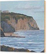 Sunset Cliffs Ca Wood Print by Raymond Kaler
