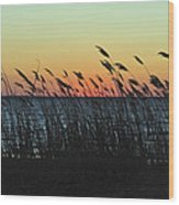 Sunset Colors Island Beach State Park Nj Wood Print