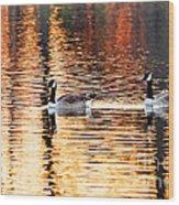 Sunset Cruise Wood Print by Scott Pellegrin