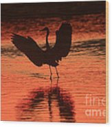 Sunset Dancer Wood Print