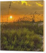 Sunset Dunes Wood Print by Marvin Spates
