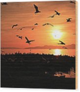Sunset Flights Wood Print