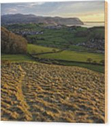 Sunset From Nant Y Gamar Wood Print