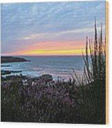 Sunset Garden View Wood Print