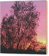 Sunset In April- Silute Lithuania Wood Print