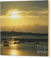 Sunset In Camargue - France Wood Print