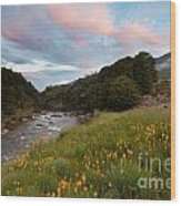 Sunset In Cobb Valley Of Kahurangi Np Of New Zealand Wood Print
