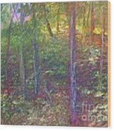 Sunset In July Wood Print by Ron Bowles