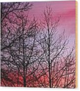 sunset in late February Wood Print