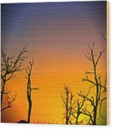 Sunset In Mesa Verde Wood Print