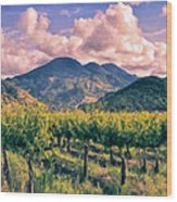 Sunset In Napa Valley Wood Print