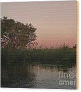 Sunset In Teh Pantenal Wood Print