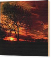 Sunset In The Field Wood Print