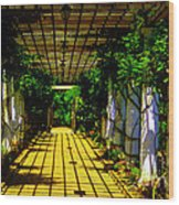 Sunset In The Garden  Wood Print