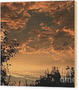 Sunset In The Orchard Wood Print by Cari Gesch