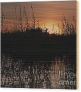 Sunset In The Pantenal Wood Print