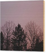 Sunset In The Woods Wood Print