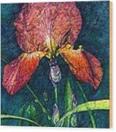 Sunset Iris Wood Print